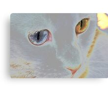 My ethereal delight Canvas Print