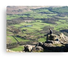 A Seat above the Valley Canvas Print