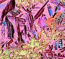 Canyon Fantasy by Lenore Senior