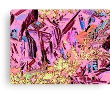 Canyon Fantasy Canvas Print