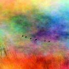 In Flight by Brian Gaynor