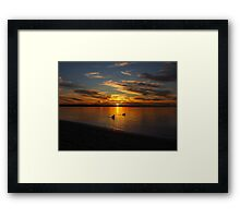 Pelicans on the water Framed Print