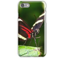 Sara Longwing - Heliconius sara iPhone Case/Skin