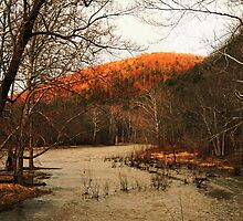 Glowing Spring Evening Along the Swollen Creek by Geno Rugh
