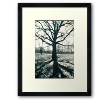 In the shadow on an old one Framed Print