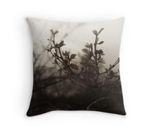 Brush Feild Throw Pillow