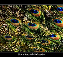 Peacock Feathers (Close-up) by Rose Santuci-Sofranko