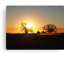 Silhouette horses Canvas Print