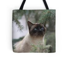 A Beautiful Kitty Tote Bag