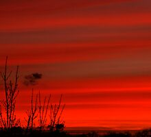 Red Skies at Sunset by Joanne  Bradley