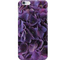 Purple hydrangea flower iPhone Case/Skin