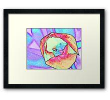 My Tulip Framed Print