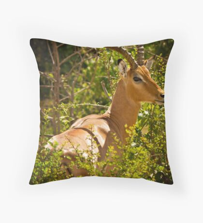{ creature of grace } Throw Pillow
