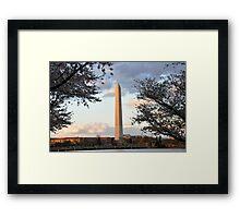 washington monument in april Framed Print