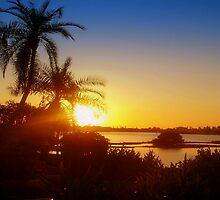 Lingering sun rays by ♥⊱ B. Randi Bailey