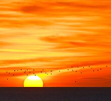 Sunrise From Whitburn by chemival