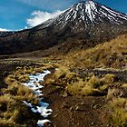 Lingering Snow - Mt Ngauruhoe, New Zealand by Phil McComiskey