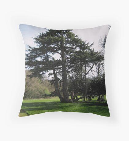 Kingsweston Park. Throw Pillow
