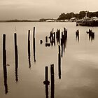 Risby Cove -Tasmania      sepia by lighthousecove