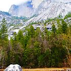 Yosemite National Park by Toby Wilson
