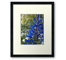 Blue Bottle Tree Framed Print