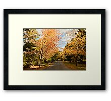 Autumn at Hill End Framed Print