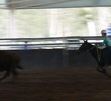 Bison Run by louisegreen