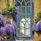 Cottage Window ~ Whitchurch Canonicorum by Susie Peek