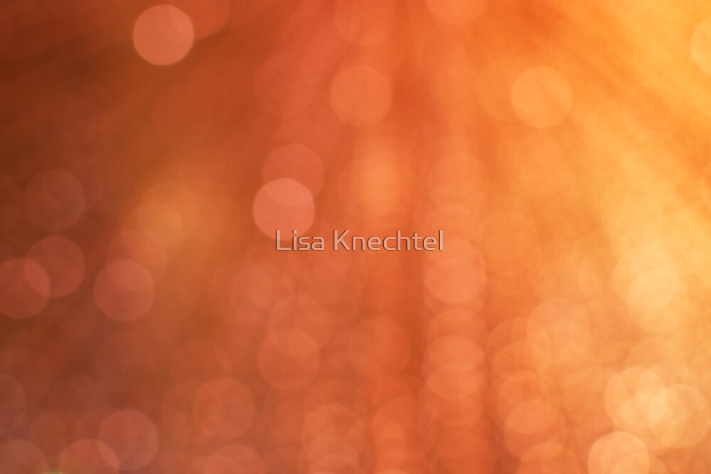 Let There Be Light by Lisa Knechtel