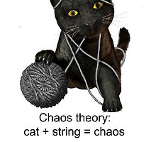 Chaos theory defined by Carol and Mike Werner
