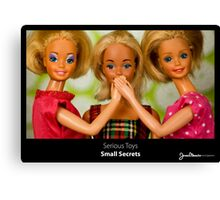 Serious Toys - Small Secrets Canvas Print