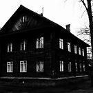Dark house by Andrey Kudinov