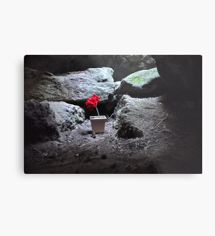 Flower in the Cave Metal Print