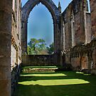 Shadows at Bolton Abbey  by dewhud