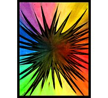 """Rainbow Splat"" Photographic Print"