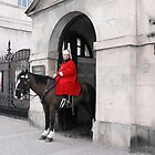 Horseguards Parade - London by Mel Harrison