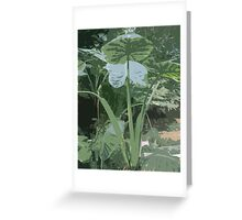 Puddle card's, Art in a Puddle card collection Greeting Card