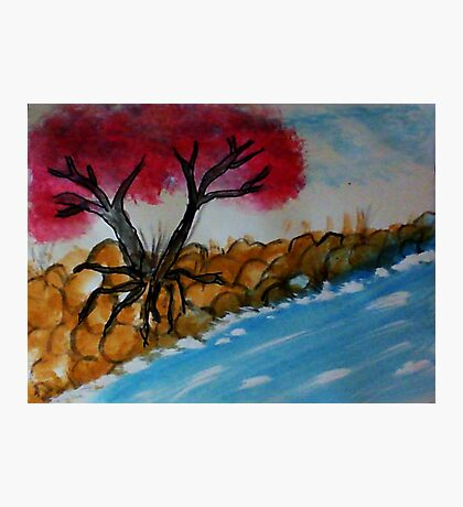 Trees growning out of a rocky bank, watercolor Photographic Print