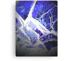 Snow and Shadow Canvas Print