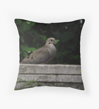 Fountain Visitor Throw Pillow
