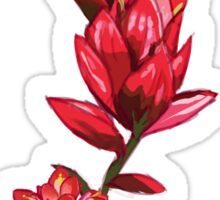 Illustrated Indian Paint Brush Sticker