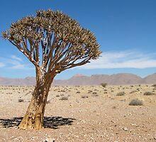 Tree by Robin Veldhuis