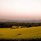 Surrey Sunrise by Jenn Louise