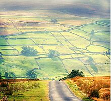 The Light On The Dale Photographic Print