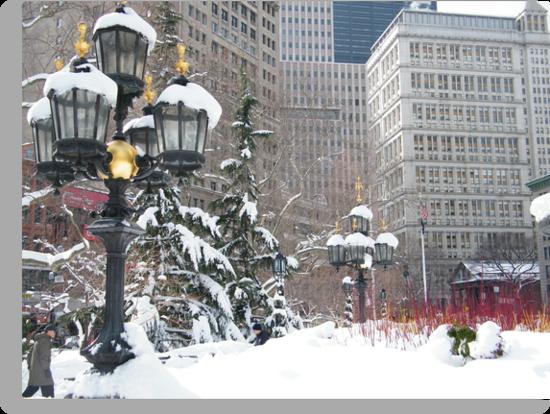 NY December City Hall Park, Snow View, New York by lenspiro