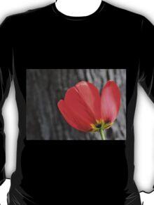 Varigated Red Tulip Petals T-Shirt