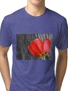 Varigated Red Tulip Petals Tri-blend T-Shirt