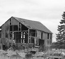 old barn and tree by Joe  LaFata