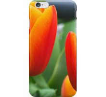Apricot Pair iPhone Case/Skin