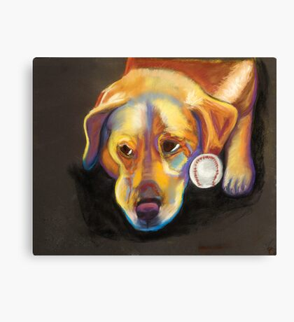 Golden Lab with Baseball Canvas Print